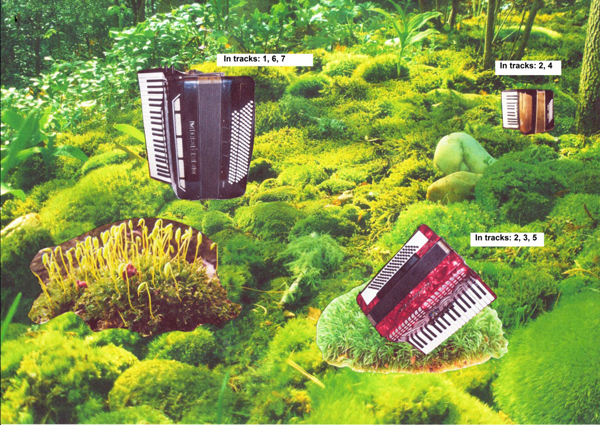 accordions used